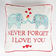 Never Forget I Love You Cushion